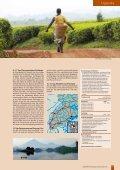 Bei den Berggorillas von Uganda - Globotrek - Seite 2
