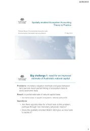 Spatially enabled Ecosystem Accounting Theory to Practise