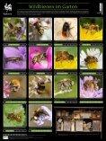 Environnement - La biodiversité en Wallonie - Seite 2
