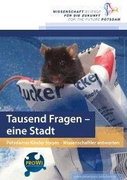 Tausend Fragen - eine Stadt .pdf - wis-potsdam.de