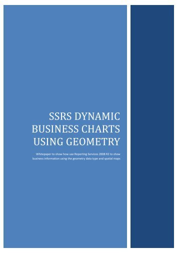 SSRS Dynamic Business Charts using Geometry - QA