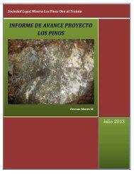 INFORME DE AVANCE PROYECTO LOS PINOS