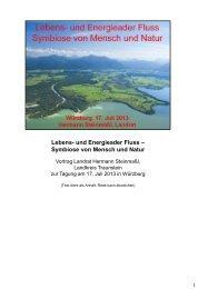 Lebens- und Energieader Fluss – Symbiose von Mensch und Natur ...