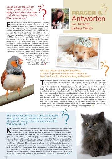 Freunde Magazin Winter 2013 S. 36 - Alles für Tiere