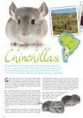 Freunde Magazin Winter 2013 S. 36 - Alles für Tiere - Page 7