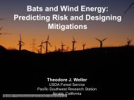 Bats and Wind Energy: Predicting Risk and Designing ... - tdglobal