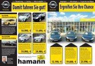 Hamann_FlyerJungwagen Aussen