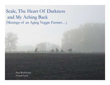 Scale, The Heart Of Darkness and My Aching Back