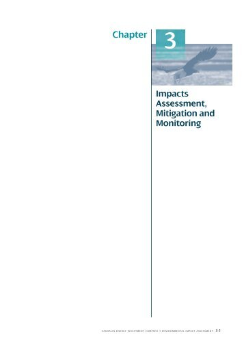 Impacts Assessment, Mitigation and Monitoring
