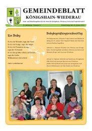 Gemeindeblatt 01-2013 - Königshain-Wiederau
