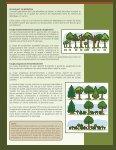 Amélioration du boisé lors des coupes - Page 3