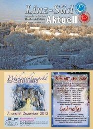 Ausgabe 21 - Dez. 13 - Pichling