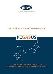 Pegasus 2013 - Blume Weiden