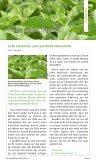 300 dpi mit Schnittmarken (ca. 28 MB) - SteviaGuide - Page 3