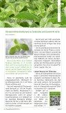 300 dpi mit Schnittmarken (ca. 28 MB) - SteviaGuide - Page 5