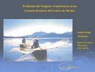 Cuaternario en las Cuencas lacustres del Centro de Mexico