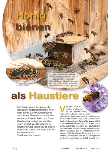 Honigbienen als Haustiere und Schwere Zeiten - Naturschutzbund