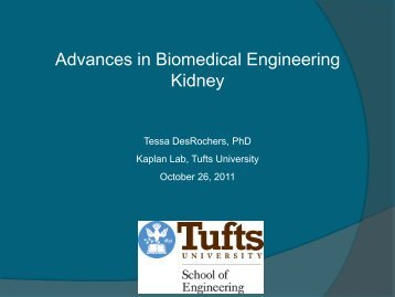 Advances in Biomedical Engineering