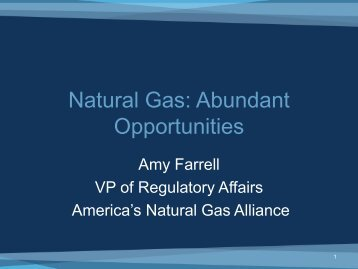 Natural Gas: Abundant Opportunities - Society of the Plastics Industry