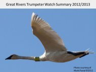 Great Rivers Trumpeter Watch Summary 2012/2013 - Audubon ...