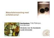 Åsa Davidsson, Lunds tekniska högskola - Avfall Sverige
