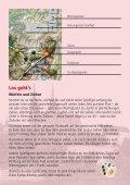 SR_Spielregeln_RZ.qxd (Page 1) - Carlit - Page 2