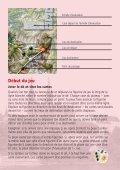 SR_Spielregeln_RZ.qxd (Page 1) - Carlit - Page 6