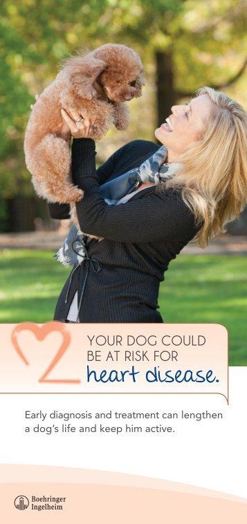 heart disease. - Cardio DVM