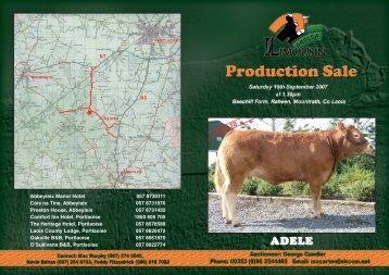 Download full Catalogue (PDF) - Ardlea & Elite Limousins