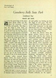 Gooseberry Falls State Park - webapps8