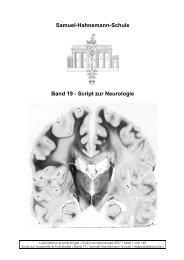 Samuel-Hahnemann-Schule Band 19 - Script zur Neurologie
