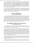 The Project Gutenberg eBook of Game Birds and ... - Spira Boats - Page 7