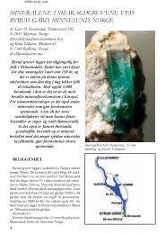mineralene i smaragdgruvene ved byrud gård, minnesund ... - NAGS