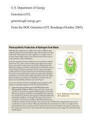 U.S. Department of Energy Genomics:GTL genomicsgtl.energy.gov ...
