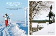 vintermys På Pensionat - Fjällnäs
