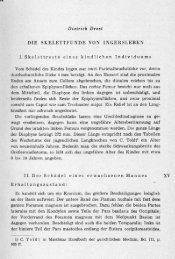 Dietrich Drost DIE SKELETTFUNDE VON INGERSLEBEN 1 ...