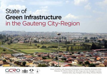 State of Green Infrastructure in the Gauteng City-Region