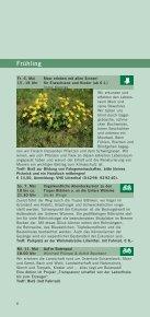 Wege ins Moor - destination-desktop.de - Page 6