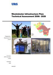 Westminster Infrastructure Plan: Technical Assessment (2009) WCC