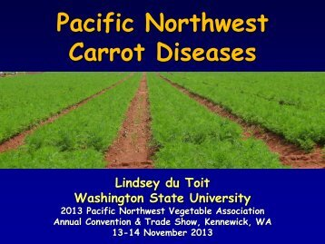 Power Point: Pacific Northwest Carrot Diseases - eOrganic