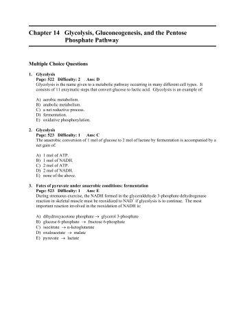 Student Worksheet Solutio