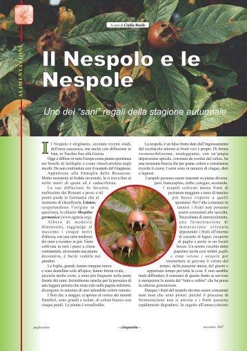 nespole.pdf