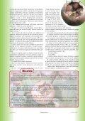 nespole.pdf - Page 2