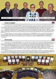 Panel of judges Dommerne - Danish Digital