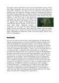 Seite 23 Neumann Thomas BLACK HAWK DOWN _5_ - Space 2063 - Page 2