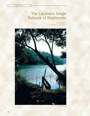 The Lacandon Jungle Bulwark of Biodiversity