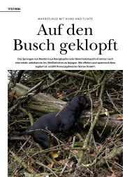 TITELTHEMA - Wild und Hund