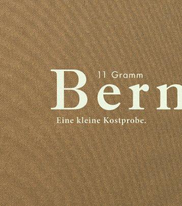 Flyer - Idee Bern