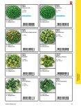 FINDUS Gemüse – natürlich und frisch - Frisco Findus - Seite 4