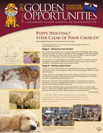 Puppy Hunting? Steer Clear of Poor Choices! - Delaware Valley ...